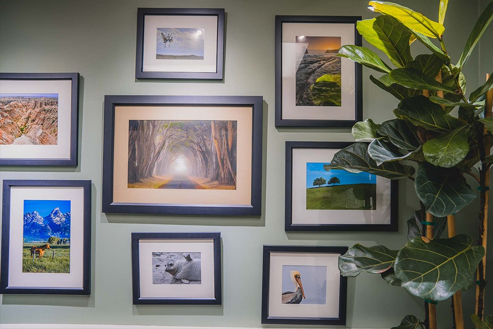 Nature images at Saratoga Endodontic office